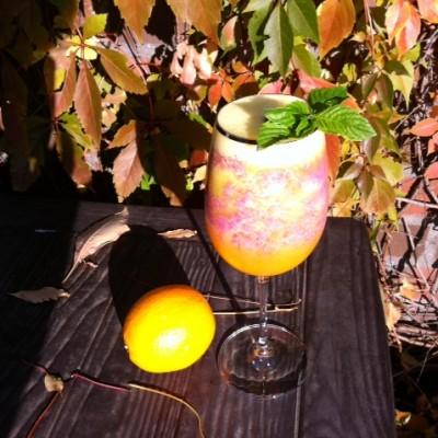 Orangen-Stachelbeeren-Smoothie