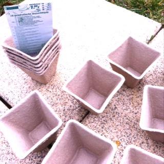 biologisch abbaubare Pflanzenbehälter