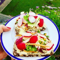 Brote mit Hummus und Radieschen